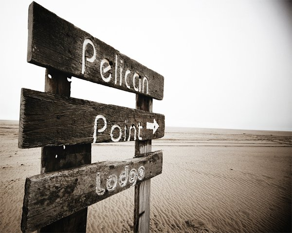 NAMIBIA, Walvis Bay - Pelican Point