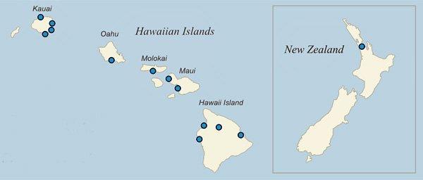 HAWAII & NEW ZEALAND – Castle Resorts – Airline Staff Rates on maui haleakala sunrise, maui hotels and resorts, maui kahului airport, maui spa, maui animals, maui people, maui surf spots, kaanapali beach map, maui vacation packages, maui black sand, maui paintings, maui sunseeker lgbt resort, maui mat, big island hawaii resort map, maui beach resort, maui hawii, maui hawaii hotels,