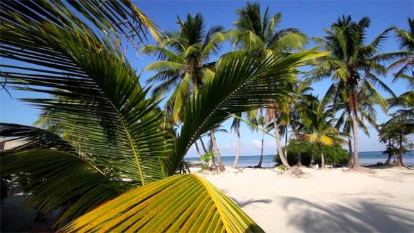 MEXICO, XCALAK – Costa de Cocos Resort  30% discount