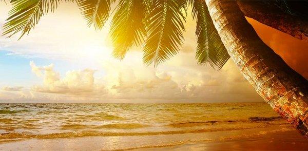 HONDURAS Roatan Island – Mariposa Lodge  25% Airline Staff Discount