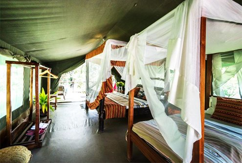 Aruba Mara Camp