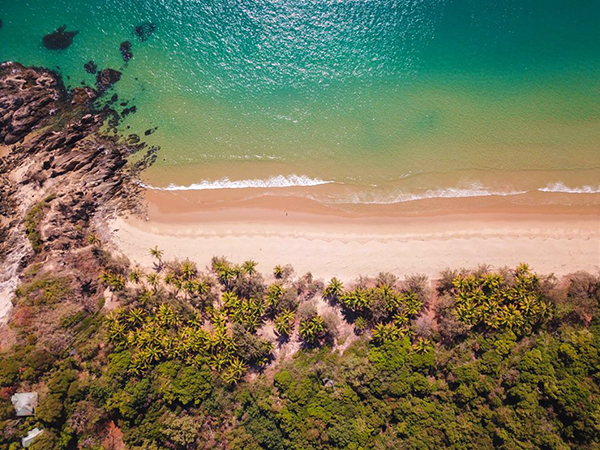 PORT DOUGLAS Thala Beach Nature Reserve –  28% Airline Staff Discount