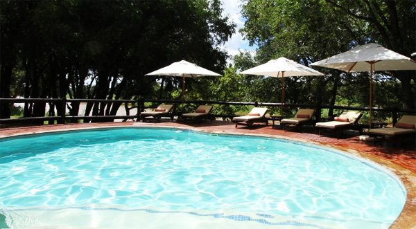 KRUGER PARK - Mpala Safari Lodge