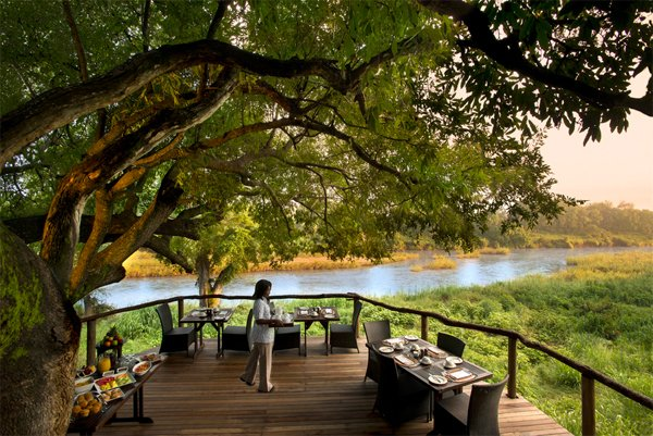 SOUTH AFRICA Safari – MORE Experiences