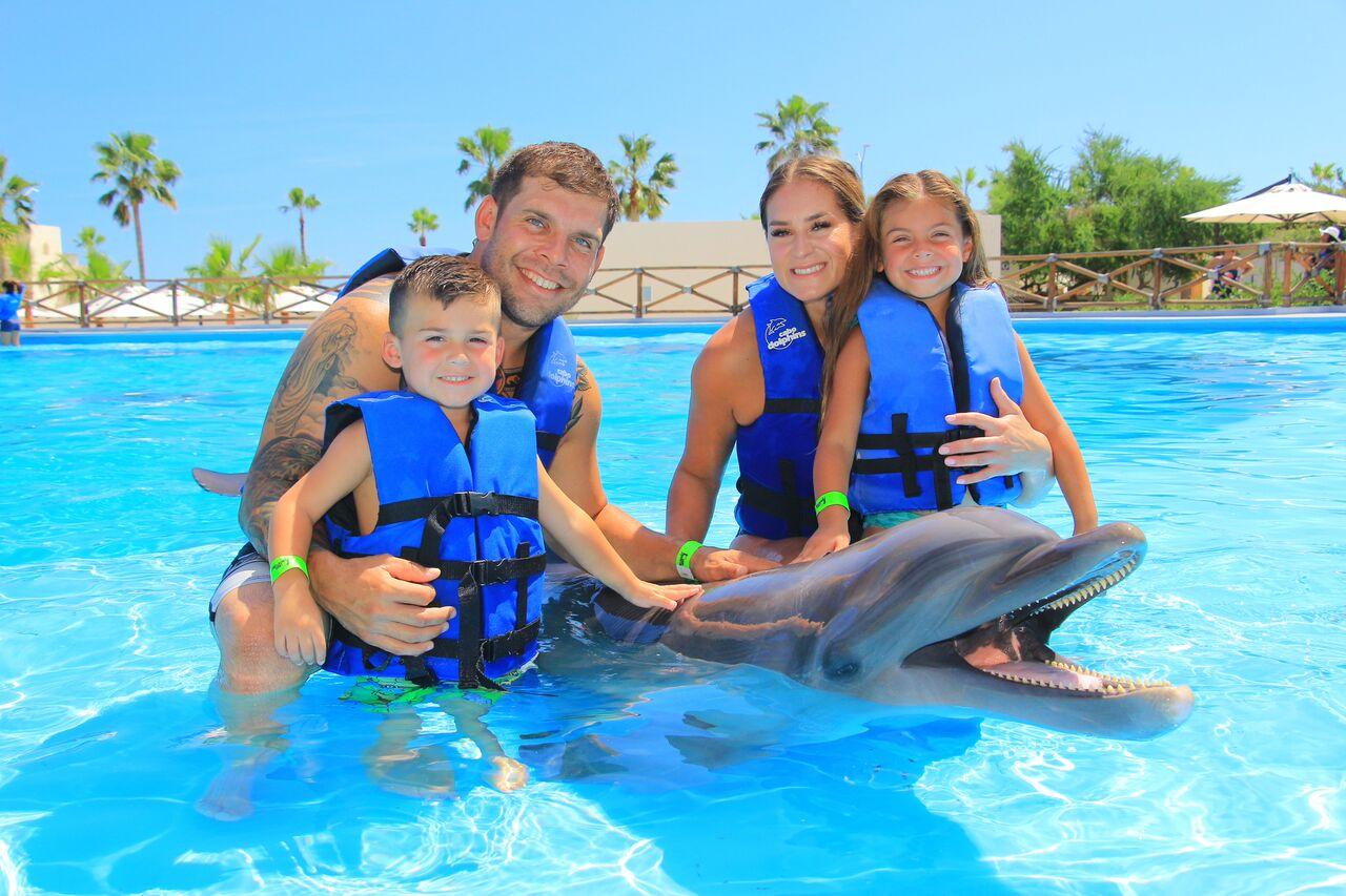 Cabo San Lucas Cabo Dolphins Amp Cabo Adventures 50 Discount