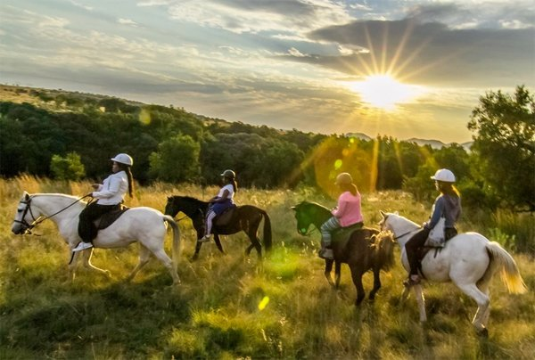South Africa Horseback Safaris