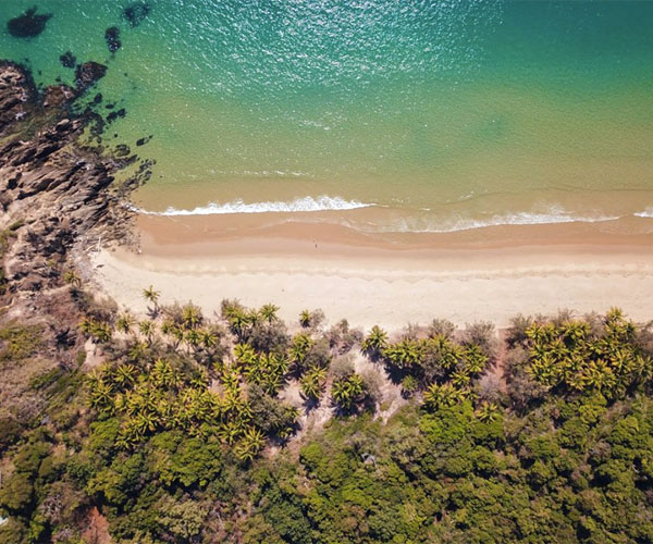 Port Douglas Car Rental: Thala Beach Nature Reserve